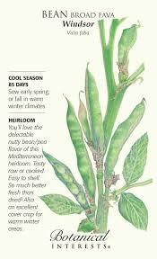 botanical sts 22 best kit conac images on botanical illustration
