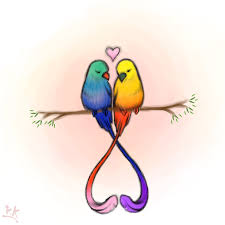 drawn lovebird pencil and in color drawn lovebird