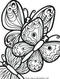 full size of outline printable butterflies to colour and print