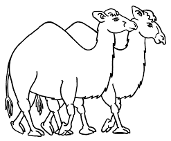 printable camel coloring pages coloring me