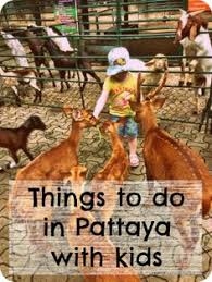 ultimate guide top things to do in pattaya with and