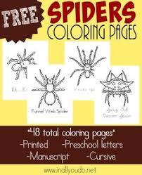 spider coloring worksheets spider kindergarten