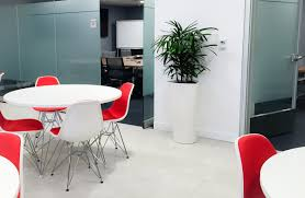 Best Plants For Desk by How To Choose Best Plants For Your Office