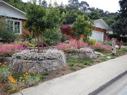 california native plants landscaping nv professional landscaping landscape landscaping design