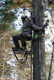 what to look for in a climbing treestand
