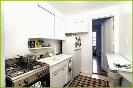 Kitchen Cabinets New York City Custom Kitchen Cabinet Cost Nyc Awesome Kitchen Cabinets New York