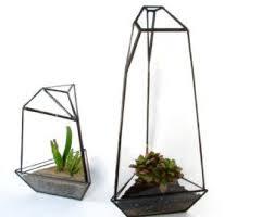 best 25 large glass terrarium ideas on pinterest terranium