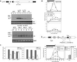 alternative splicing mediates responses of the arabidopsis
