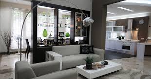 ideas gorgeous living room decoration best minimalist living