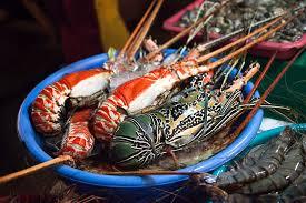 comment cuisiner un omar anatomie comparée de la langouste et du homard