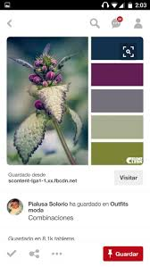 550 best polymer clay color schemes images on pinterest colors