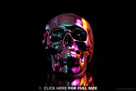 skull wallpapers photos and desktop backgrounds up to 8k