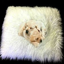 Faux Fur Bed Throw Online Get Cheap White Fur Blanket Aliexpress Com Alibaba Group