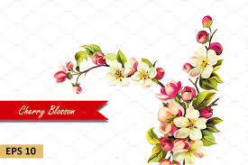 cherry blossom flowers cherry blossom flowers vector objects creative market