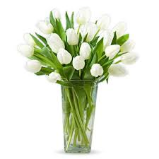 white tulips 20 white tulips online shop dubai gifts flowers to dubai