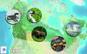 five projects that are helping to conserve endangered species in