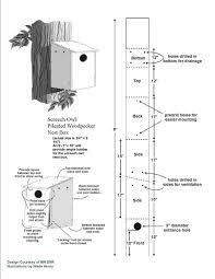 pdf plans pileated woodpecker bird house plans download amish