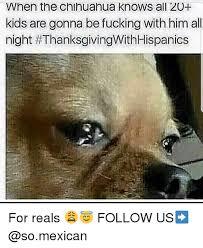 Chihuahua Meme - 25 best memes about chihuahua chihuahua memes