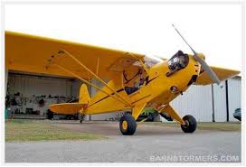 Barn Stormers Com Spotted For Sale 100hp Clip Wing Cuby Homebuilt Wish I Could