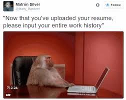 monkeys animals gifs how to reduce job stress not my circus not my monkeys