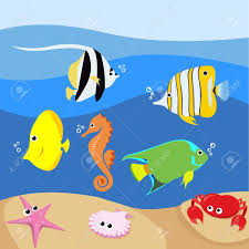 tropical fish clipart ocean life pencil and in color tropical