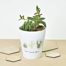 Cactus Planters by Can U0027t Touch This U0027 Cactus Plant Pot Cactus Print