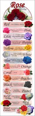 colour meaning rose colours and meanings 24 hrs city florist singapore