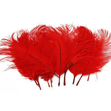 Where To Buy Ostrich Feathers For Centerpieces by Amazon Com 10pcs Home Decor Red Ostrich Feathers Health