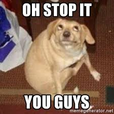 Oh You Stop It Meme - oh stop it you guys oh you dog meme generator