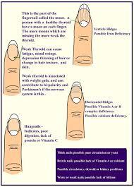 the 25 best fingernail health ideas on pinterest flat