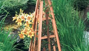 Obelisk Trellis Metal Pergola Garden Arch Trellis Arresting Metal Trellis Designs