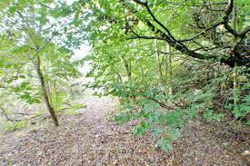 holme park stoneymeadow road east kilbride g74 3xy home