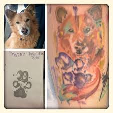 image result for paw print watercolor things i like pinterest