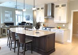 Kitchen  Classic Contemporary Kitchen With Classic Kitchen Chairs - Timeless kitchen cabinets
