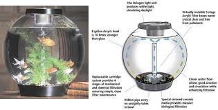 baby biorb replacement light unit biorb and biube aquarium tanks and products for your fish
