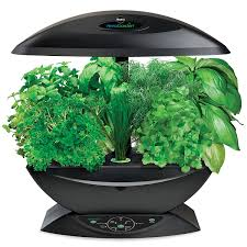 herb gardening indoors herb garden tips a guide and journal on