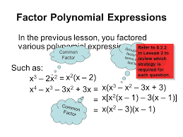 2 factor polynomial expressions
