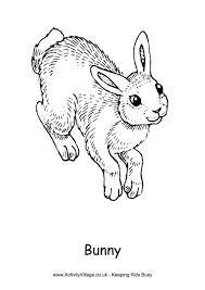 Rabbit Colouring Pages Rabbit Colouring Page