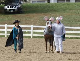 Halloween Costumes Horse 46 Horse Costume Ideas Images Horses