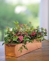 african violet pots gardener u0027s supply