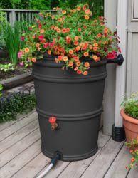 rain barrels and more 45 gallon up to 63 gallon plastic rain barrels