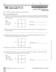 Dihybrid Crosses Worksheet Genetics Practice Problems 7 Dihybrid Crosses Support