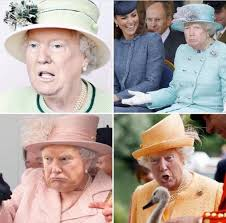 Fedora Hat Meme - the left honestly thinks the queen trump memes will trigger us