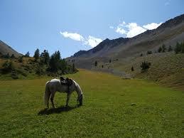 chambre d hote nevache centre équestre les sabots de vénus randonnée à cheval la vallée