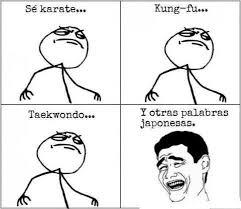 Memes Se - se karate kungfu memes cosas de facebook