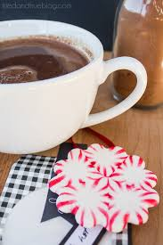hot chocolate gift peppermint hot chocolate gift tried true
