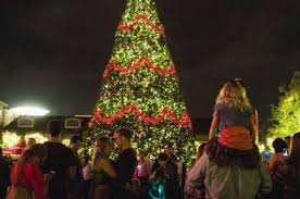 how many christmas lights per foot of tree annual luxury in lights kicks off with help from special woodlands