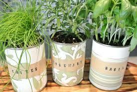 indoor herb garden ideas how to make an indoor herb garden diy mason jars hanging ideas with