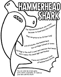 sharks coloring pages hammerhead shark coloring page crayola com