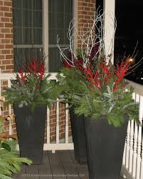 Christmas Decorations With White Branches 51 best winter containers images on pinterest christmas planters
